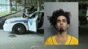 Miami man arrested for damaging police cars