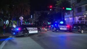 Miami Beach stabbing victim